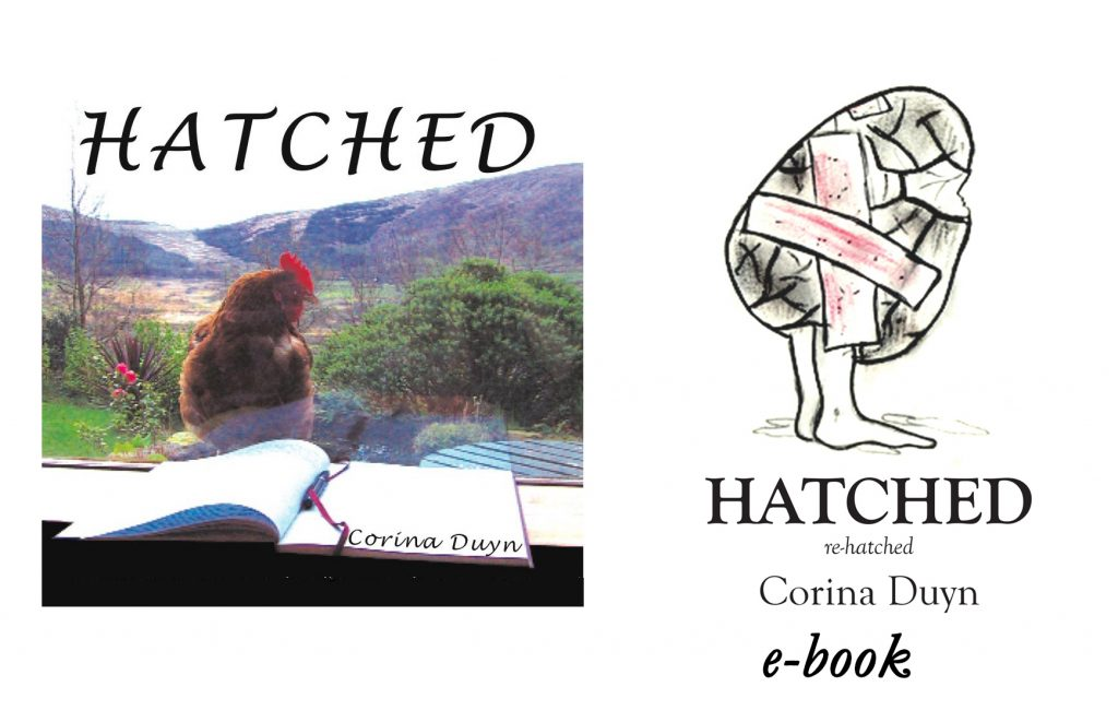 Hatched- a Creative Journey Through M.E. by Corina Duyn, image of egg on legs with sticky plaster to hold broken shell together