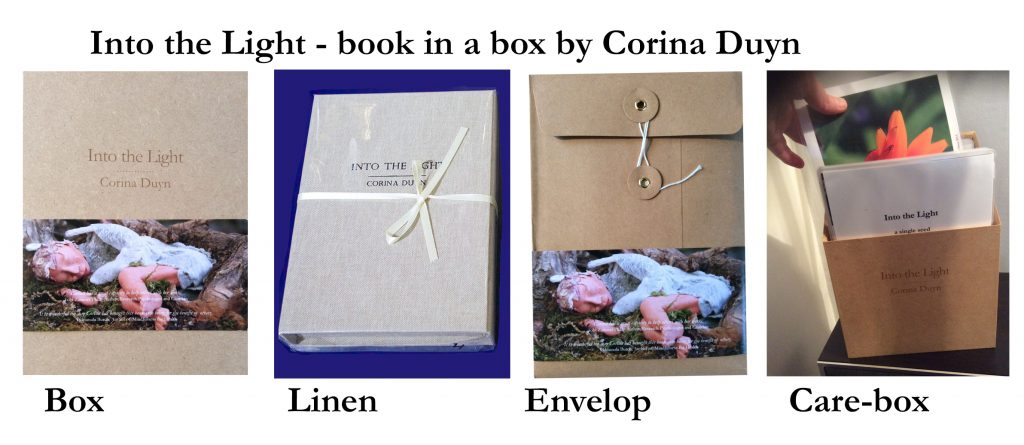 four version of Into the Light book in a box by Corina Duyn